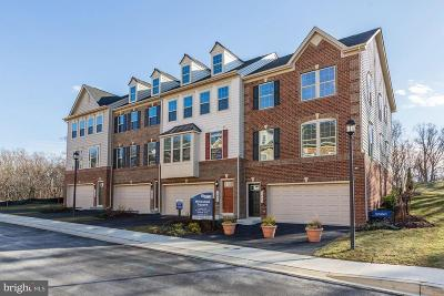 Silver Spring Townhouse For Sale: 1730 Whitehall Drive