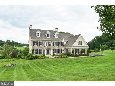 Chadds Ford PA Single Family Home For Sale: $899,900