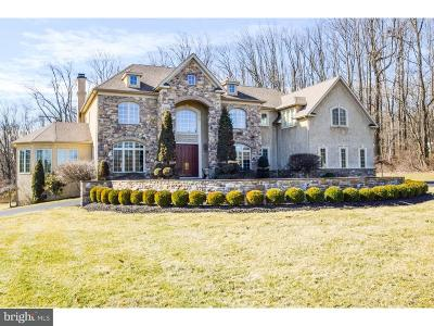 Bucks County Single Family Home For Sale: 3 Great Hills Road