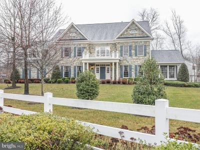 Centreville Single Family Home For Sale: 5825 Ridings Manor Place