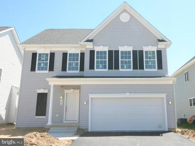 Odenton Single Family Home For Sale: 1410 Canopy Lane