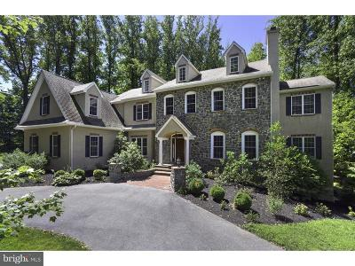 Kennett Square Single Family Home For Sale: 114 Halle Drive