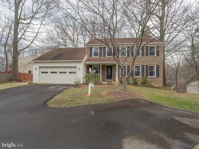 Fairfax Single Family Home For Sale: 9725 Loch Linden Court