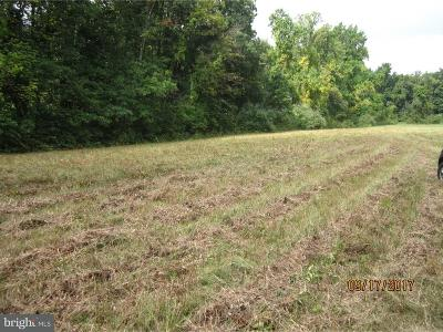 Downingtown Residential Lots & Land For Sale: Lot #7 Black Horse Road