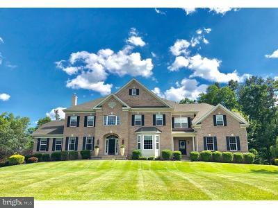 Tabernacle Twp Single Family Home For Sale: 3 Jessica Court