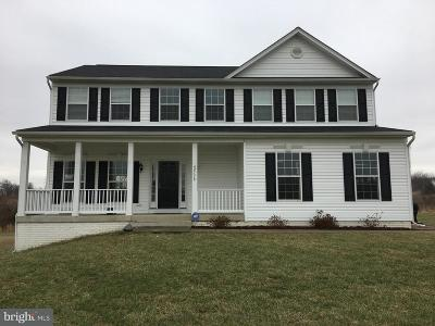 Leesburg Single Family Home For Sale: 42178 Lamz Place