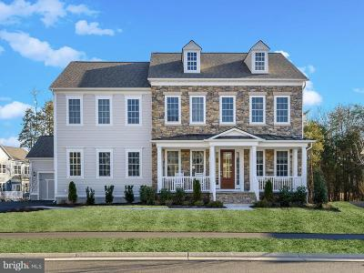 Aldie Single Family Home For Sale: 41225 Speckled Wren Court