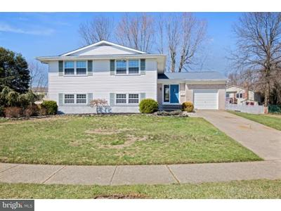 Mount Laurel Single Family Home For Sale: 227 Mill Run Court