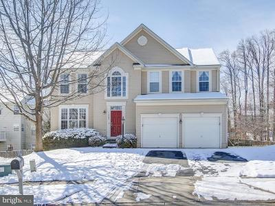 Gaithersburg Single Family Home For Sale: 11204 Cool Breeze Place