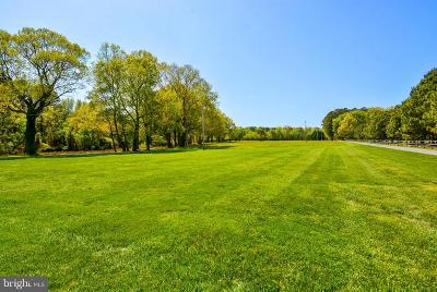 Talbot County Farm For Sale: 9241 Deepwater Point Road
