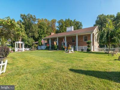 North East Single Family Home For Sale: 5346 Turkey Point Road