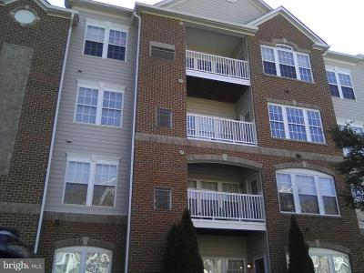 Odenton Condo For Sale: 2602 Clarion Court #203