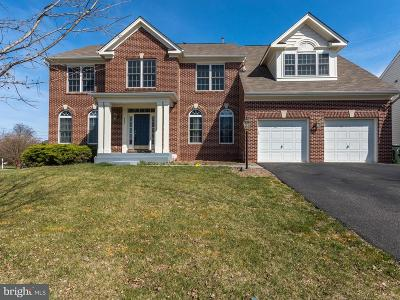 Culpeper Single Family Home For Sale: 451 Blossom Tree Road