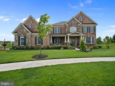 Aldie Single Family Home For Sale: 41544 Deer Point Court