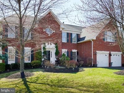 Ashburn Single Family Home For Sale: 43753 Welty Court