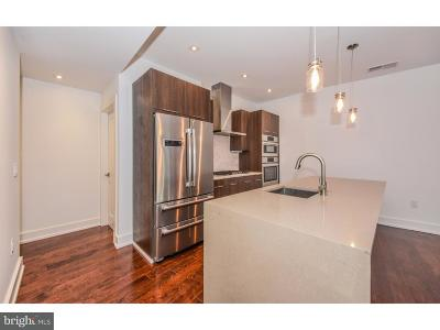 Northern Liberties Single Family Home For Sale: 620 N 3rd Street #4B