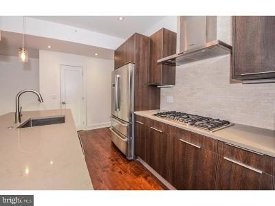 Northern Liberties Single Family Home For Sale: 620 N 3rd Street #4A