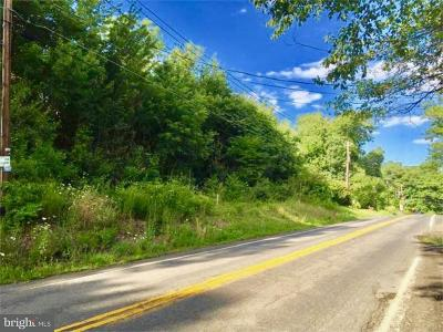 Residential Lots & Land For Sale: High Road
