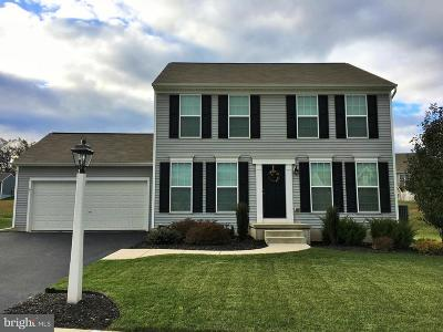 York Haven Single Family Home For Sale: 40 Crabapple Drive