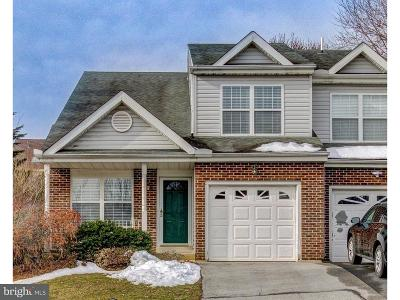 Hockessin Single Family Home For Sale: 19 Eynon Court