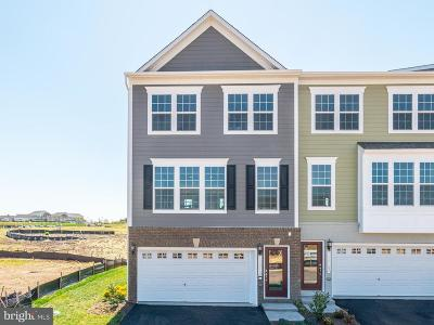 Gainesville, Haymarket Townhouse For Sale: Mongoose Trail