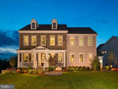 Aldie Single Family Home For Sale: 41011 Spanglegrass Court