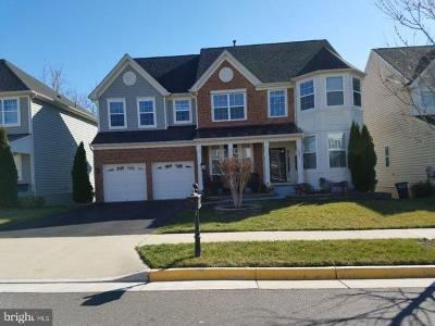 Prince William County Single Family Home For Sale: 16607 Space More Circle
