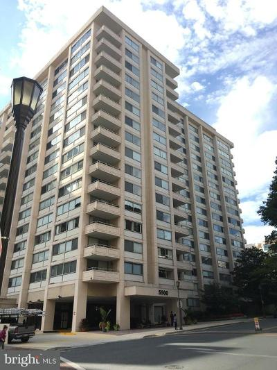 Chevy Chase Condo For Sale: 5500 Friendship Boulevard #2002N