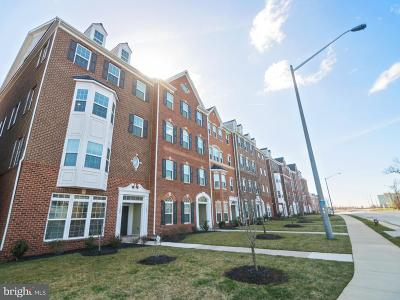 Herndon Condo For Sale: 13691 Air And Space Museum Parkway #12B