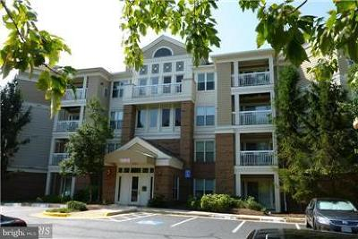 Fairfax County, Fairfax City Condo For Sale: 12913 Alton Square #219