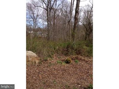 New Castle County, NEW CASTLE COUNTY Residential Lots & Land For Sale: 308 Milford Avenue