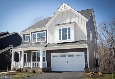 Dumfries Single Family Home For Sale: 17948 Woods View Drive