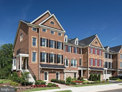 Chantilly Townhouse For Sale: Cambridge Hill Terrace