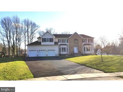 Princeton Junction Single Family Home For Sale: 2 Emil Street