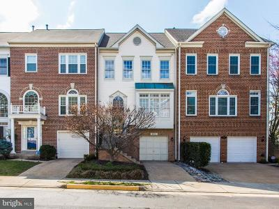 Kingstowne Single Family Home For Sale: 6653 Dunwich Way
