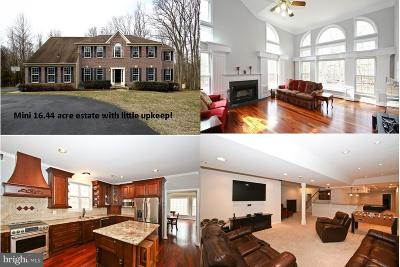 Gaithersburg Single Family Home For Sale: 8904 Primula Drive