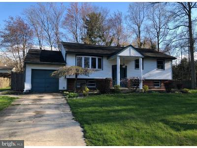 Woodbury Heights Single Family Home For Sale: 600 Park Avenue
