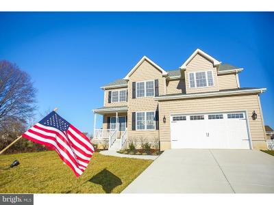 Smyrna Single Family Home For Sale: 110 Jump Drive