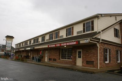 Commercial For Sale: 7460 Lancaster Pike