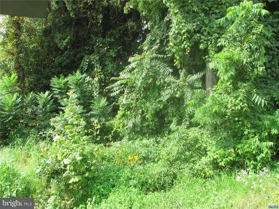 Newark Residential Lots & Land For Sale: 1113, 15 Capitol Trail