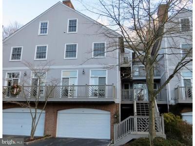Rockland Townhouse For Sale: 45 Millstone Lane