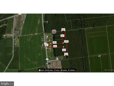 Farm For Sale: 32703 Millsboro Highway #LOT 5
