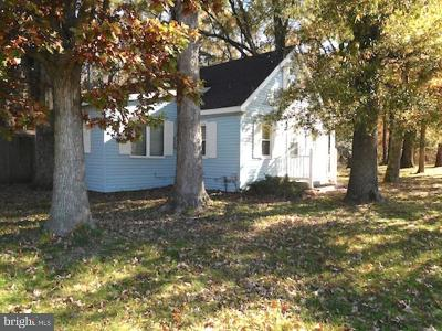 Bridgeville Single Family Home For Sale: 6237 Seashore Highway