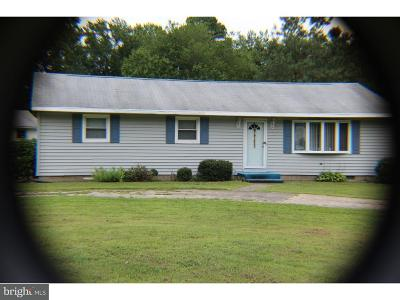 Sussex County Single Family Home For Sale: 34911 S Branchwood Place