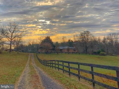 Rappahannock County Single Family Home For Sale: 174 Scrabble Road