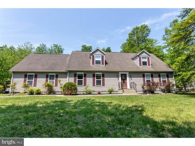 Ellendale Single Family Home For Sale: 17065 Spruce Road