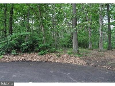 Lincoln Residential Lots & Land For Sale: Lot B Water Street