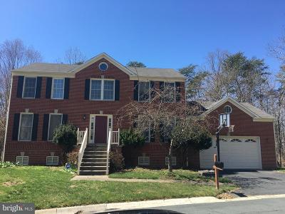 Gaithersburg Single Family Home For Sale: 14316 Cartwright Way