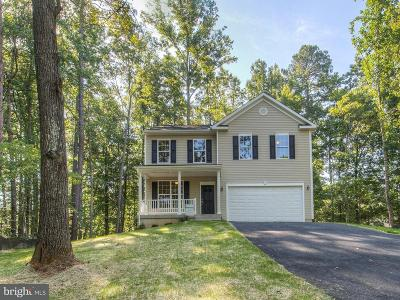 Fredericksburg Single Family Home For Sale: Twin Oaks Drive