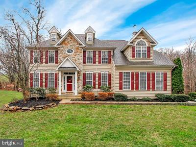 Carroll County Single Family Home For Sale: 4899 Smithfield Drive